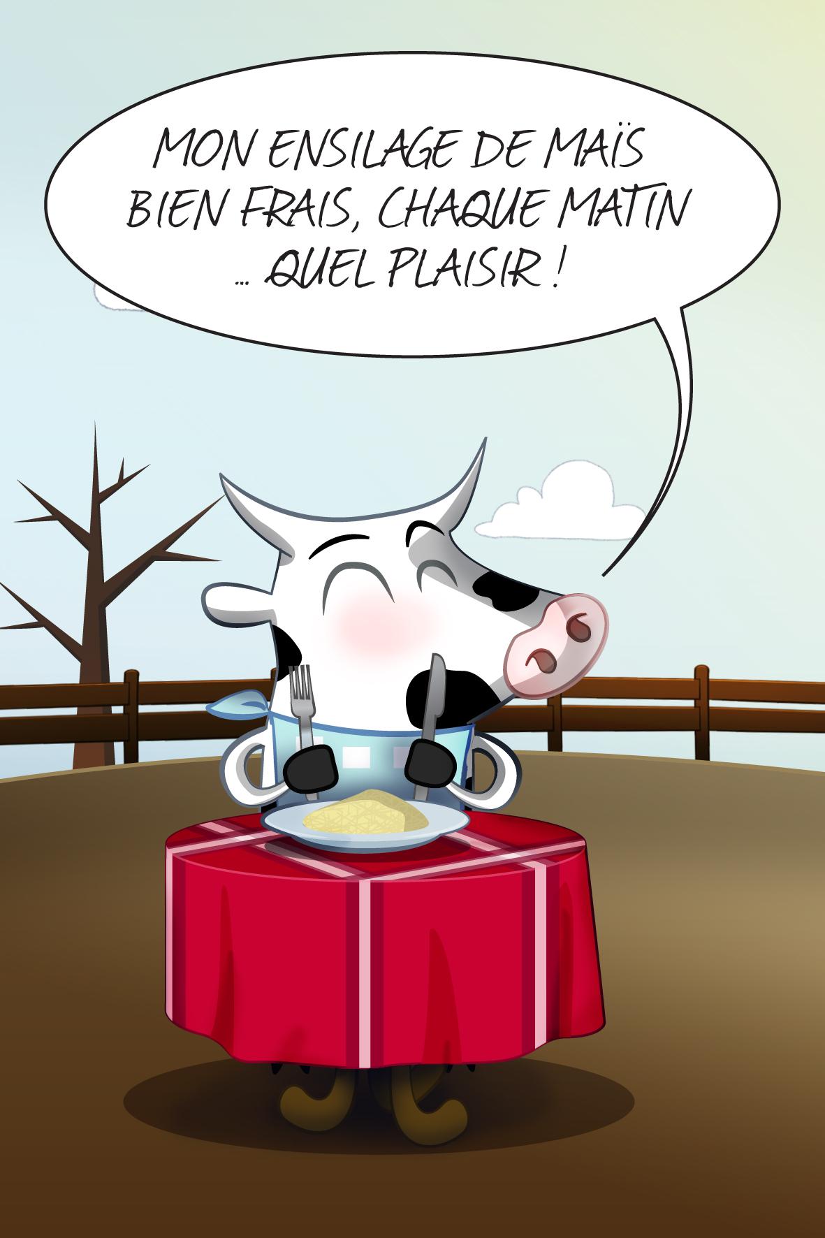 vache_12c