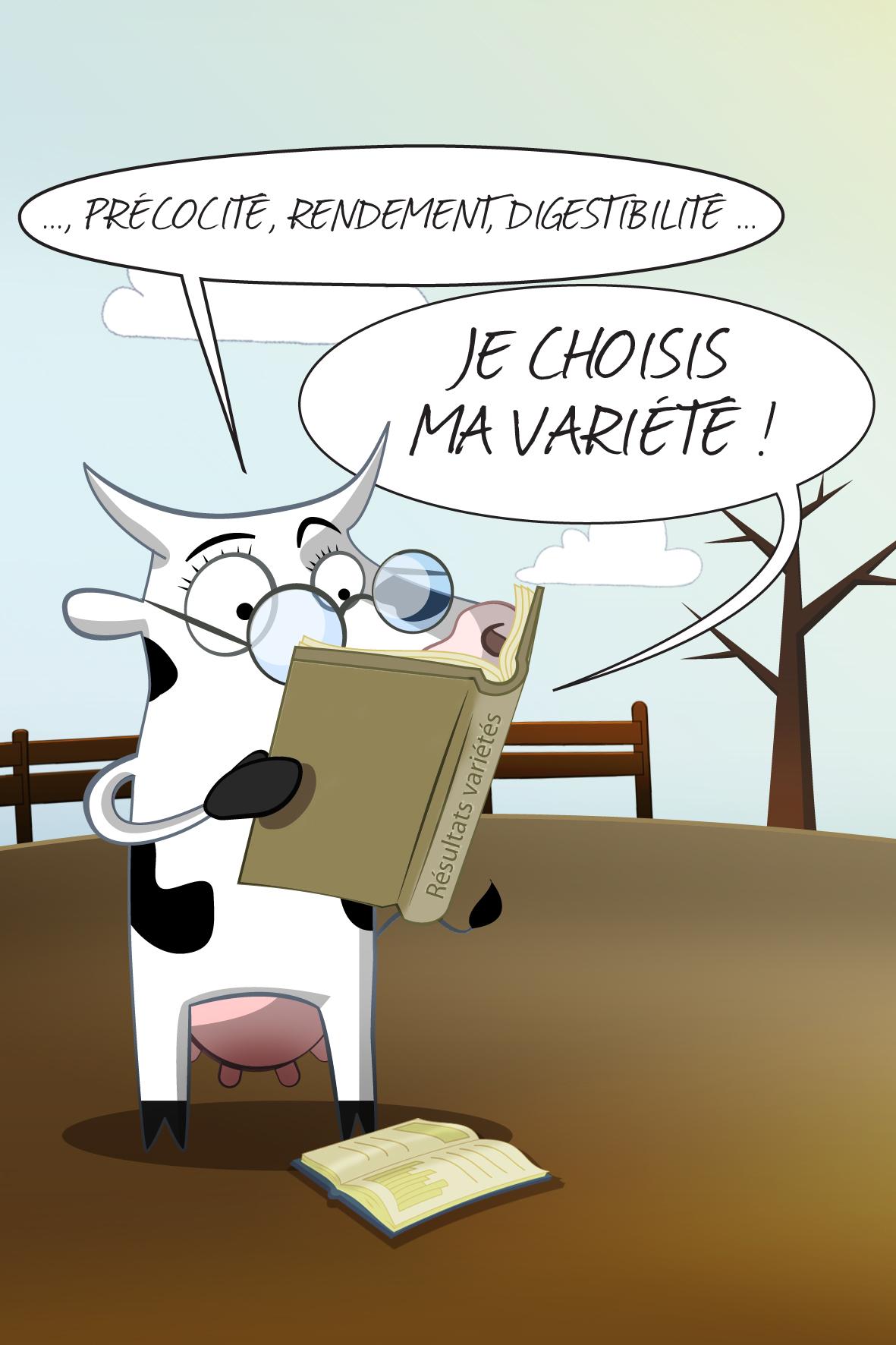 vache_1c