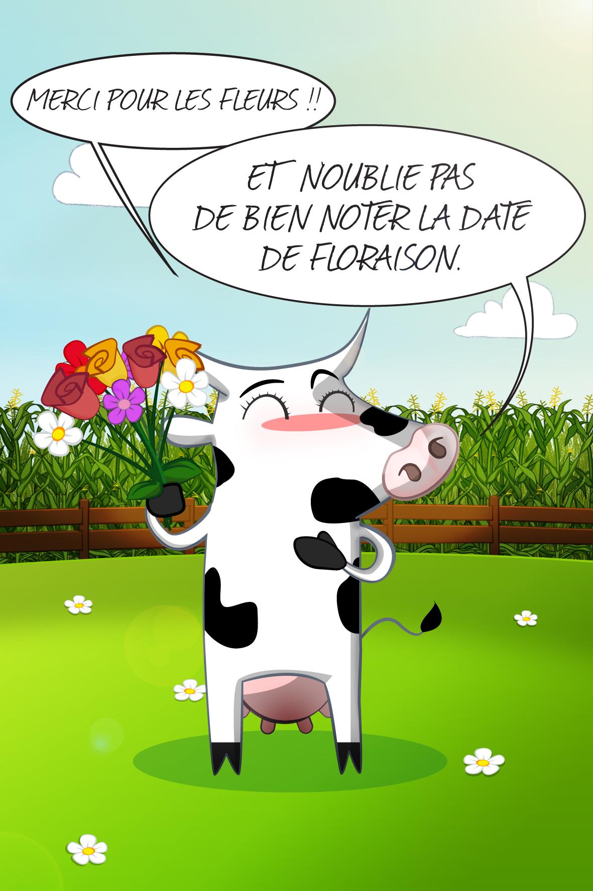 vache_3e