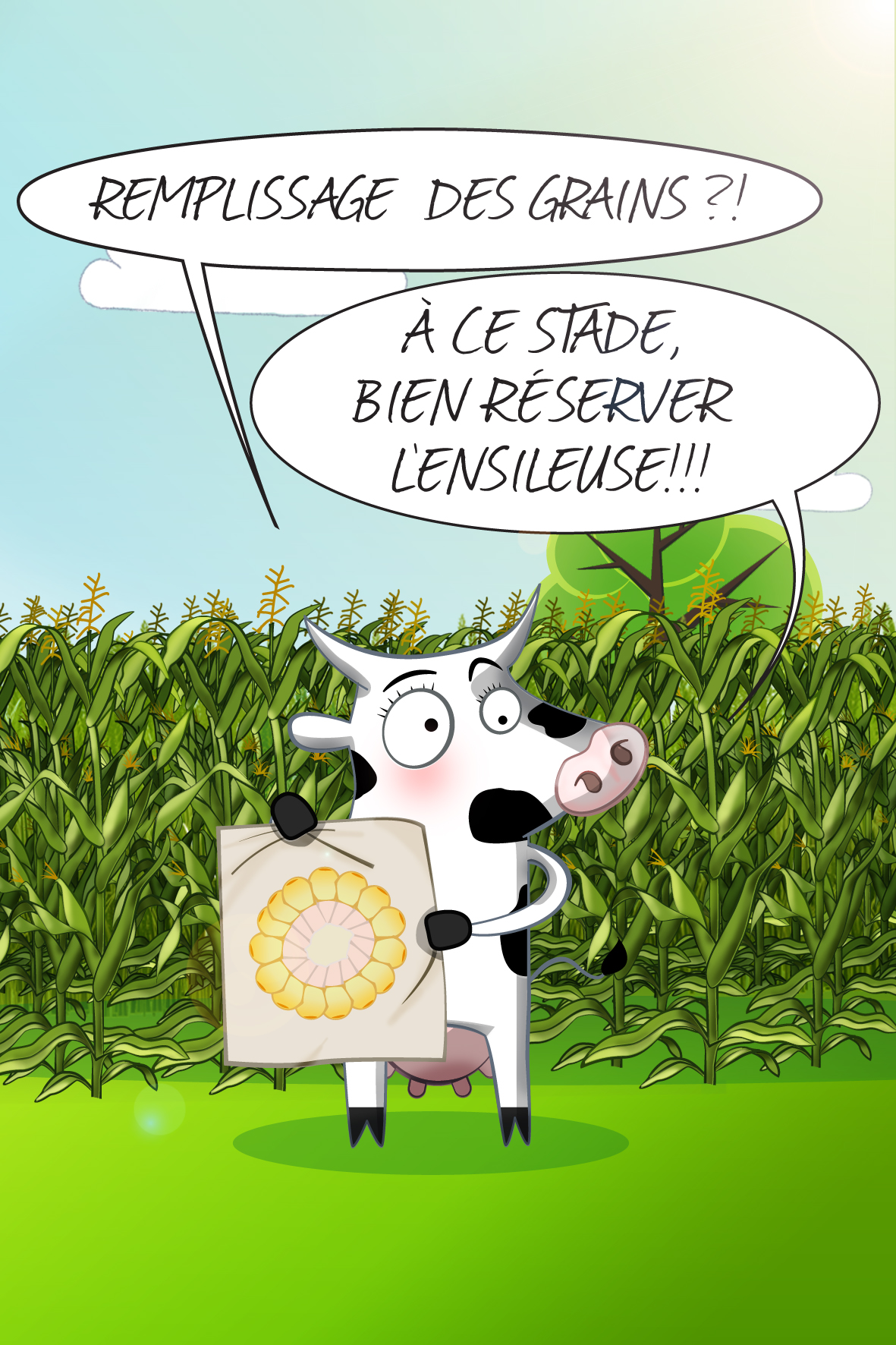 vache_4c