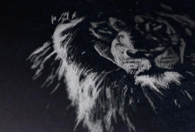 lion_pres